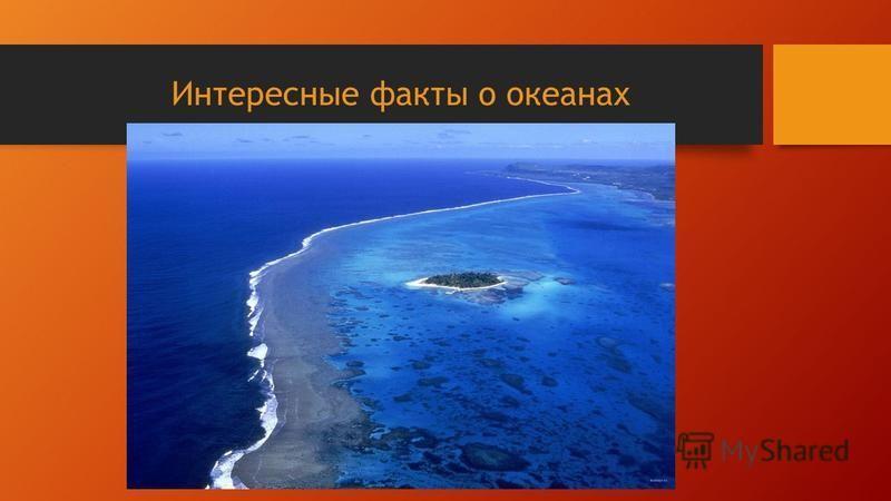 Интересные факты о океанах