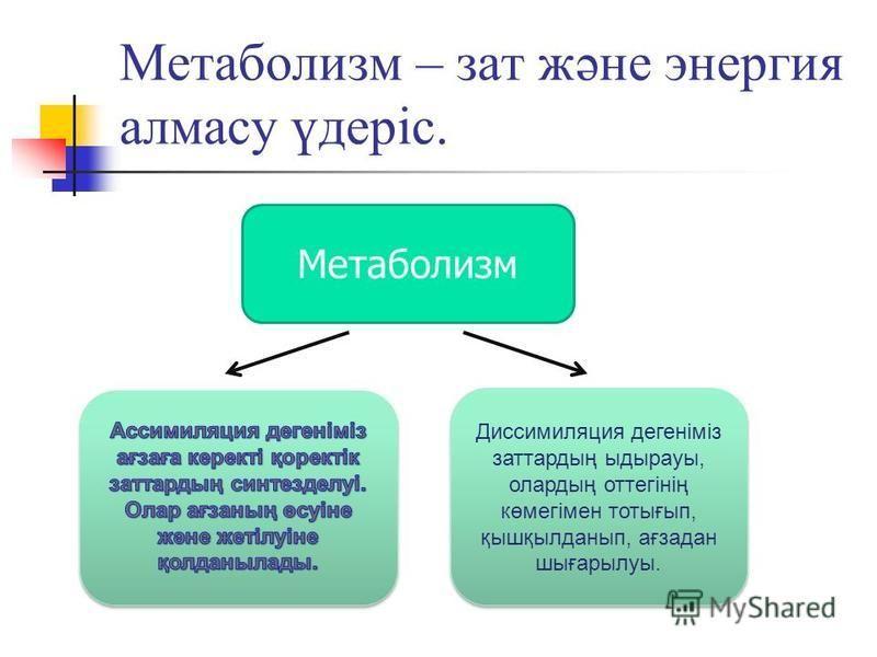 Метаболизм – зат және энергия алмасу үдеріс. Метаболизм Диссимиляция дегеніміз затратдың ыдырауы, олардың оттегінің көмегімен тотығып, қышқылданып, ағзадан шығарылуы.
