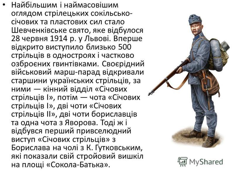 Американський історик Дж. Армстронг, аналізуючи проблеми українського націоналізму, зазначав, що ідея українських національних військових формувань зародилася у галицьких «Січах», згодом розвинулася в «Січових стрільцях» і закріпилася у військових фо