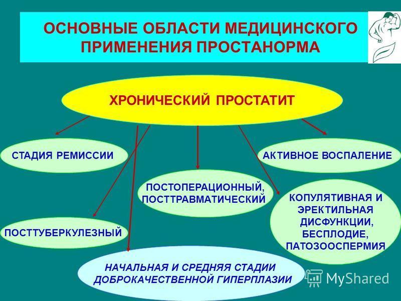 ОСНОВНЫЕ ОБЛАСТИ МЕДИЦИНСКОГО ПРИМЕНЕНИЯ ПРОСТАНОРМА ХРОНИЧЕСКИЙ ПРОСТАТИТ СТАДИЯ РЕМИССИИАКТИВНОЕ ВОСПАЛЕНИЕ ПОСТТУБЕРКУЛЕЗНЫЙ ПОСТОПЕРАЦИОННЫЙ, ПОСТТРАВМАТИЧЕСКИЙ КОПУЛЯТИВНАЯ И ЭРЕКТИЛЬНАЯ ДИСФУНКЦИИ, БЕСПЛОДИЕ, ПАТОЗООСПЕРМИЯ НАЧАЛЬНАЯ И СРЕДНЯЯ