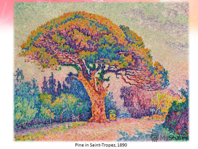 Pine in Saint-Tropez, 1890