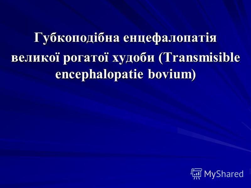 Губкоподібна енцефалопатія великої рогатої худоби (Transmisible encephalopatie bovium)