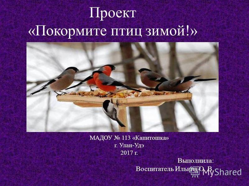 Проект «Покормите птиц зимой!» МАДОУ 113 «Капитошка» г. Улан-Удэ 2017 г. Выполнила: Воспитатель Ильина О. В.