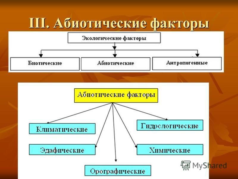 III. Абиотические факторы