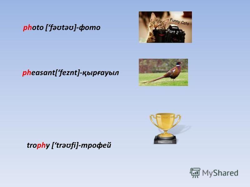 photo [fəʊtəʊ]-фото pheasant[feznt]-қырғауыл trophy [trəʊfi]-трофей