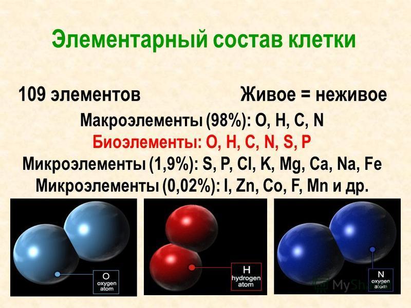 Элементарный состав клетки 109 элементов Живое = неживое Макроэлементы (98%): O, H, C, N Биоэлементы: O, H, C, N, S, P Микроэлементы (1,9%): S, P, Cl, K, Mg, Ca, Na, Fe Микроэлементы (0,02%): I, Zn, Co, F, Mn и др.