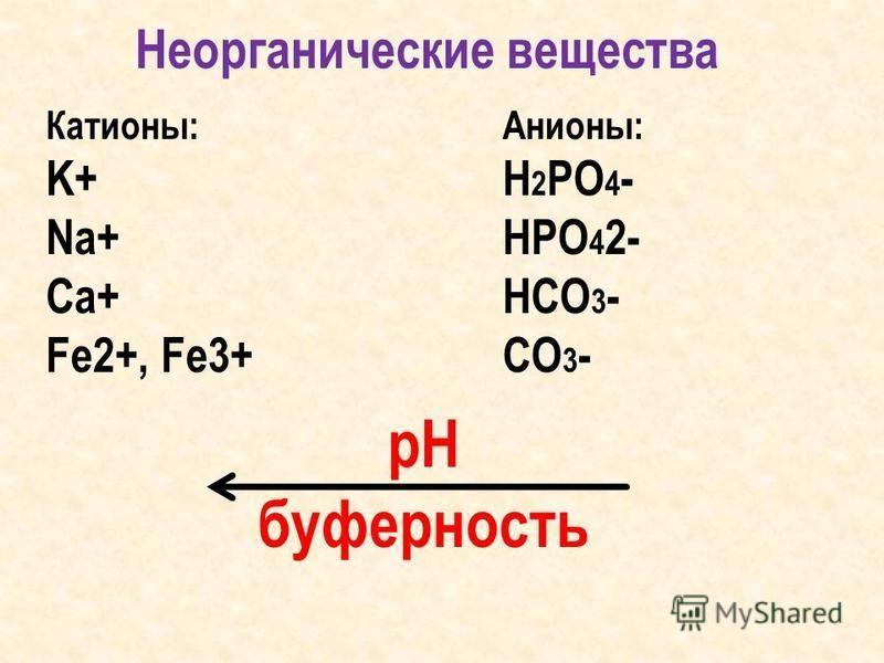 Неорганические вещества Катионы: K+ Na+ Ca+ Fe2+, Fe3+ Анионы: H 2 PO 4 - HPO 4 2- HCO 3 - CO 3 - рН буферность