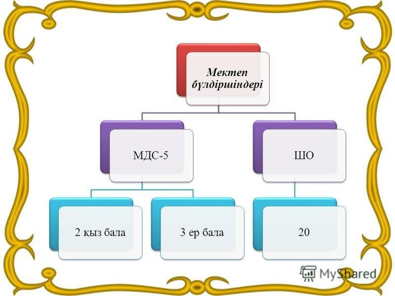 Мектеп бүлдіршіндері МДС-52 қыз бала 3 ер балаШО20