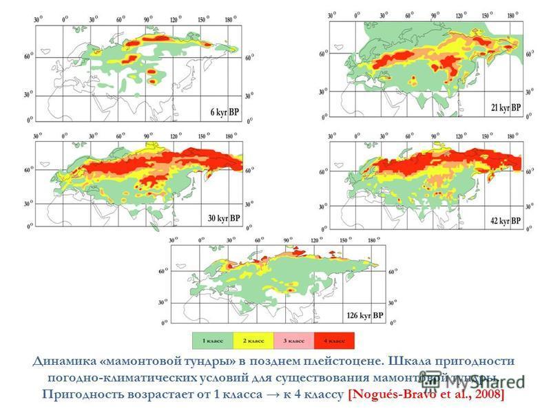 Динамика «мамонтовой тундры» в позднем плейстоцене. Шкала пригодности погодно-климатических условий для существования мамонтовой тундры. Пригодность возрастает от 1 класса к 4 классу [Nogués-Bravo et al., 2008]