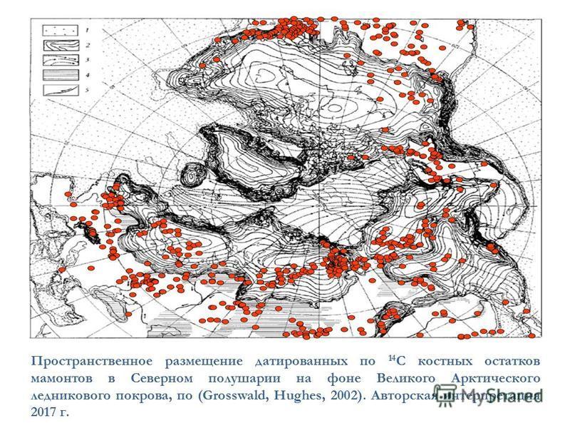 Пространственное размещение датированных по 14 С костных остатков мамонтов в Северном полушарии на фоне Великого Арктического ледникового покрова, по (Grosswald, Hughes, 2002). Авторская интерпретация 2017 г.