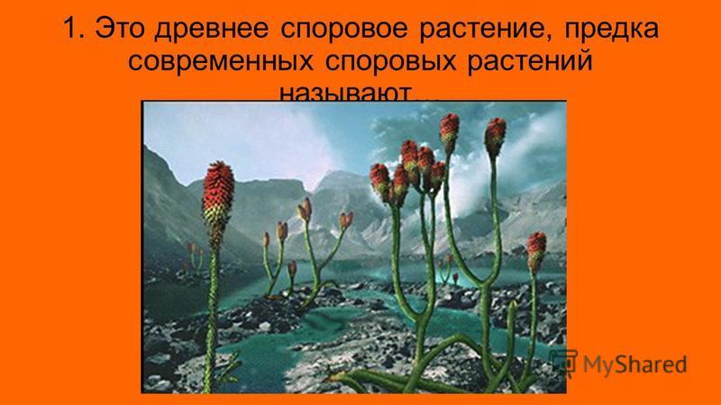 1. Это древнее споровое растение, предка современных споровых растений называют…