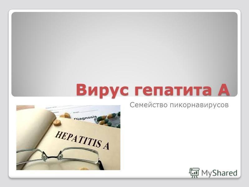 Вирус гепатита А Семейство пикорнавирусов