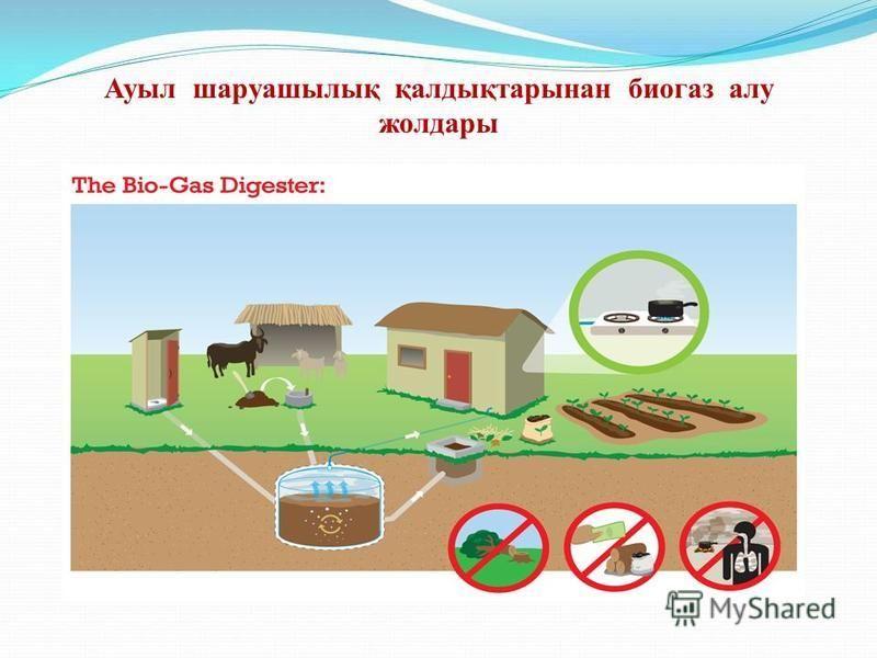 Ауыл шаруашылық қалдықтарынан биогаз алу жолдары