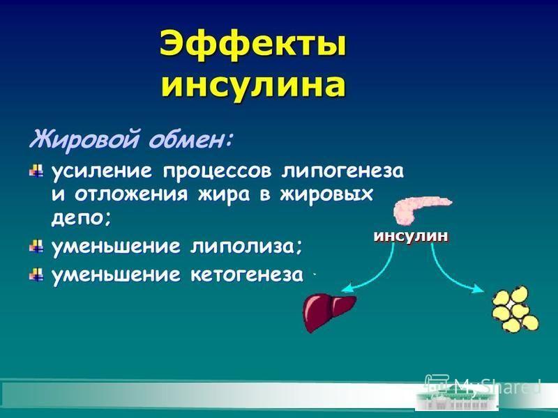 Эффекты инсулина Жировой обмен: усиление процессов липогенеза и отложения жира в жировых депо; уменьшение липолиза; уменьшение кетогенеза Жировой обмен: усиление процессов липогенеза и отложения жира в жировых депо; уменьшение липолиза; уменьшение ке