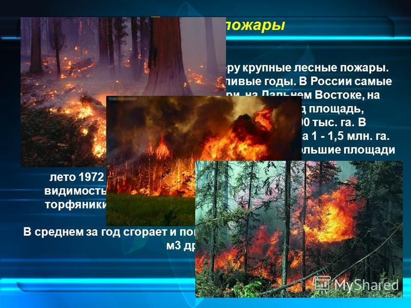 Лесные пожары Существенно загрязняют атмосферу крупные лесные пожары. Чаще в итоге они выходят в засушливые годы. В России самые опасные лесные пожары в Сибири, на Дальнем Востоке, на Урале, в Республике Коми. В среднем за год площадь, пройденная пож