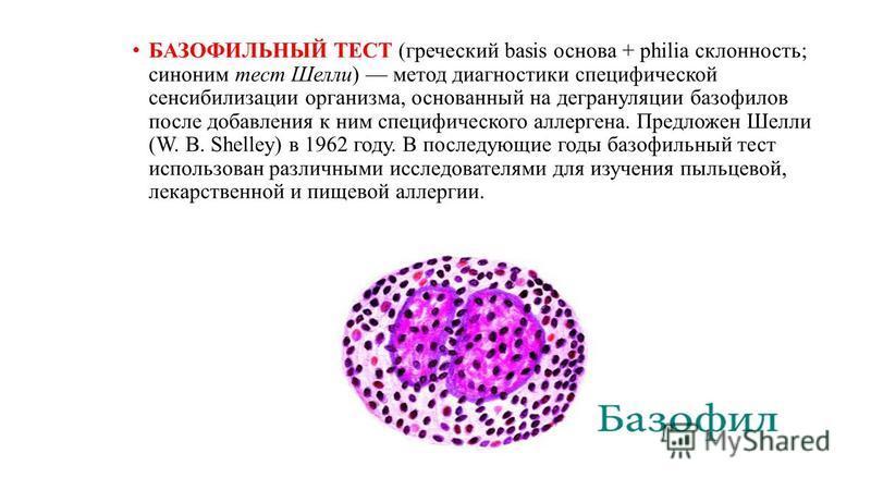 БАЗОФИЛЬНЫЙ ТЕСТ (греческий basis основа + philia склонность; синоним тест Шелли) метод диагностики специфической сенсибилизации организма, основанный на дегрануляции базофилов после добавления к ним специфического аллергена. Предложен Шелли (W. В. S