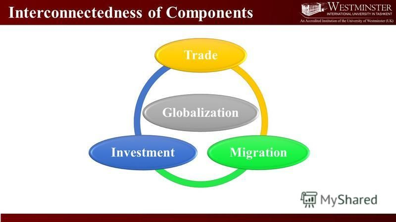 Interconnectedness of Components Globalization Trade Migration Investment