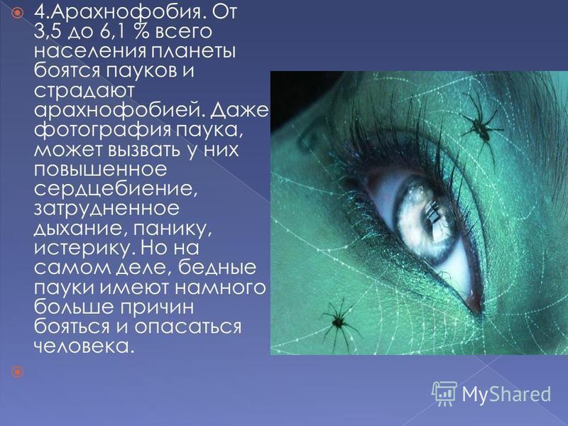 4.Арахнофобия. От 3,5 до 6,1 % всего населения планеты боятся пауков и страдают арахнофобией. Даже фотография паука, может вызвать у них повышенное сердцебиение, затрудненное дыхание, панику, истерику. Но на самом деле, бедные пауки имеют намного бол