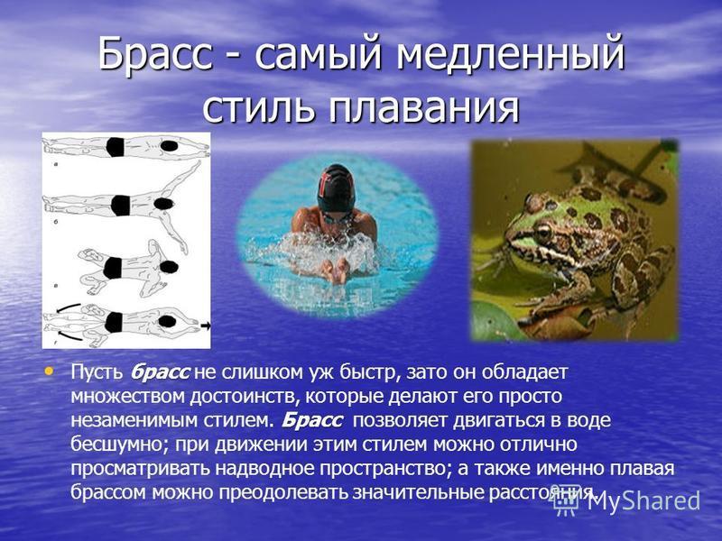 Брасс - самый медленный стиль плавания брасс Брасс Пусть брасс не слишком уж быстр, зато он обладает множеством достоинств, которые делают его просто незаменимым стилем. Брасс позволяет двигаться в воде бесшумно; при движении этим стилем можно отличн