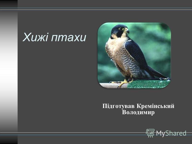 Хижі птахи Підготував Кремінський Володимир