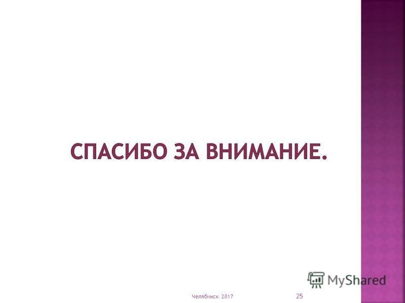 Челябинск 2017 25