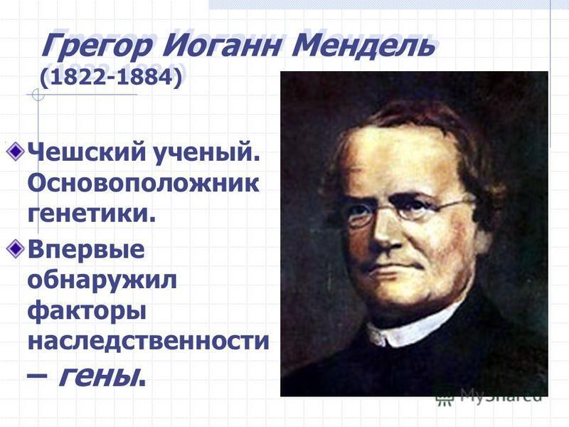 Грегор Иоганн Мендель (1822-1884) Чешский ученый. Основоположник генетики. Впервые обнаружил факторы наследственности – гены.