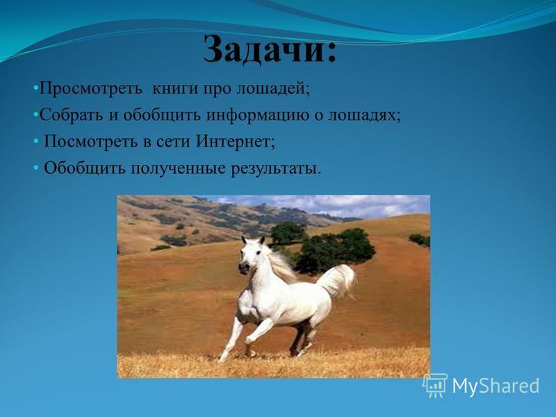 Просмотреть книги про лошадей; Собрать и обобщить информацию о лошадях; Посмотреть в сети Интернет; Обобщить полученные результаты.