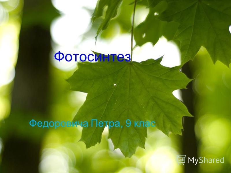 Фотосинтез Федоровича Петра, 9 клас