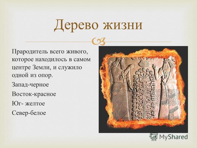 Прародитель всего живого, которое находилось в самом центре Земли, и служило одной из опор. Запад - черное Восток - красное Юг - желтое Север - белое Дерево жизни