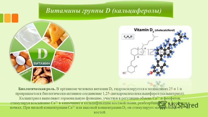 Витамины группы D (кальциферолы) Биологическая роль. В организме человека витамин D 3 гидроксилируется в положениях 25 и 1 и превращается в биологически активное соединение 1,25-дигидроксихолекальциферол (калыщтриол). Калыщтриол выполняет гормональну