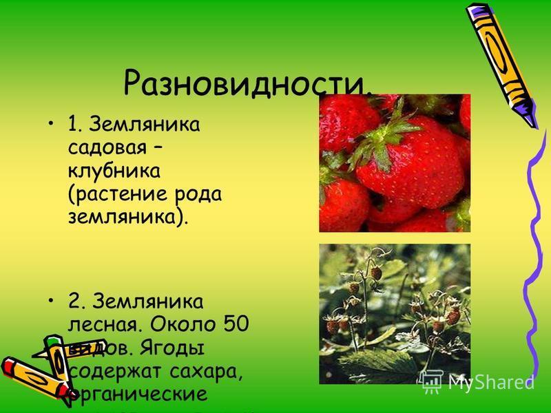Разновидности. 1. Земляника садовая – клубника (растение рода земляника). 2. Земляника лесная. Около 50 видов. Ягоды содержат сахара, органические кислоты, витамин «С».