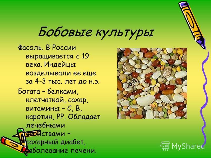 Бобовые культуры Фасоль. В России выращивается с 19 века. Индейцы возделывали ее еще за 4-3 тыс. лет до н.э. Богата – белками, клетчаткой, сахар, витамины – С, В, каротин, РР. Обладает лечебными свойствами – сахарный диабет, заболевание печени.