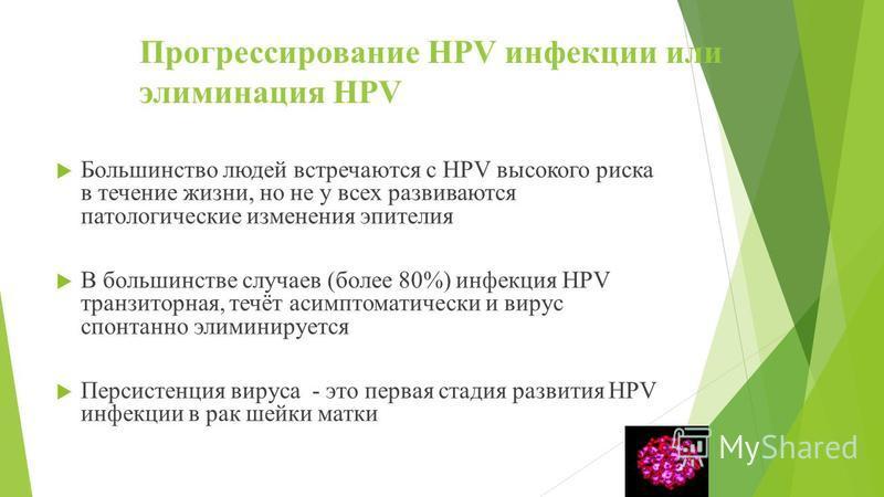 Прогрессирование HPV инфекции или элиминация HPV Большинство людей встречаются с HPV высокого риска в течение жизни, но не у всех развиваются патологические изменения эпителия В большинстве случаев (более 80%) инфекция HPV транзиторная, течёт асимпто