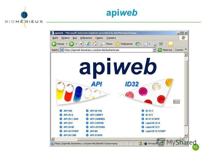 15 apiweb