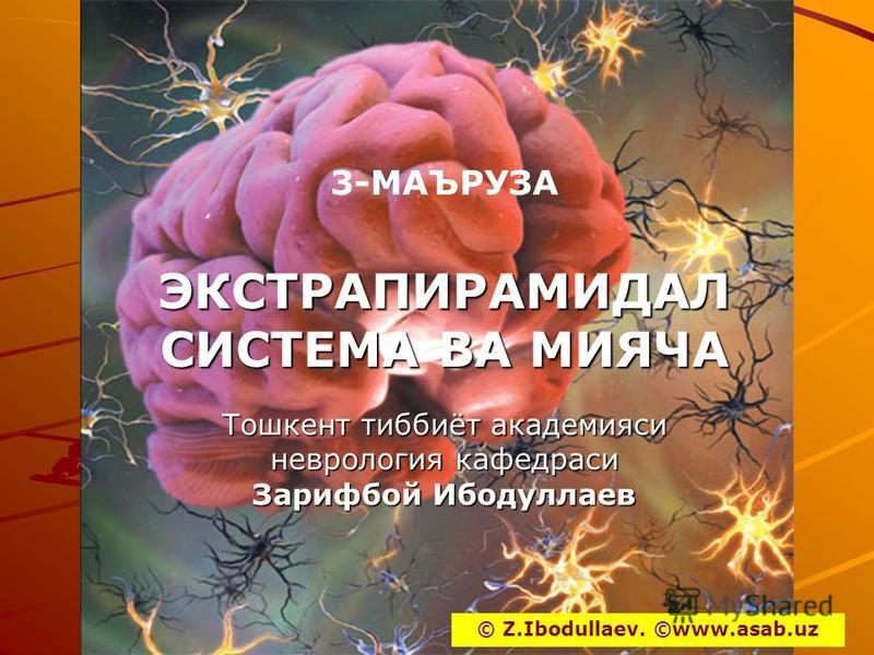3-МАЪРУЗАЭКСТРАПИРАМИДАЛ СИСТЕМА ВА МИЯЧА Тошкент тиббиёт академиаси неврология кафедрами Зарифпой Иподуллаев © Z.Ibodullaev. ©www.asab.uz