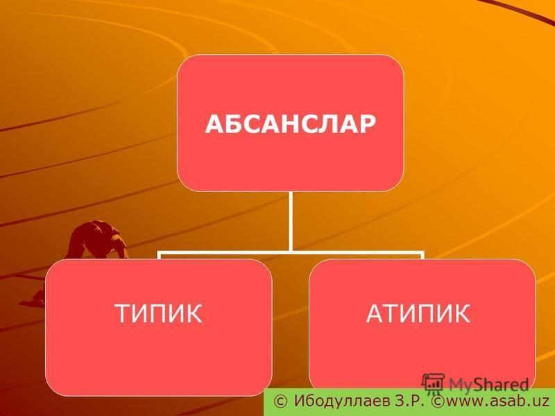 АБСАНСЛАР ТИПИКАТИПИК © Ибодуллаев З.Р. ©www.asab.uz