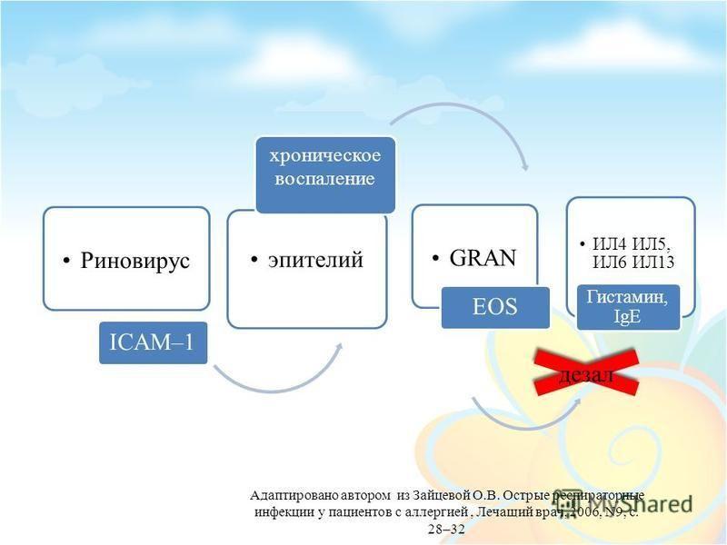 Риновирус ICAM–1 эпителий хроническое воспаление GRAN EOS ИЛ4 ИЛ5, ИЛ6 ИЛ13 Гистамин, IgE Адаптировано автором из Зайцевой О.В. Острые респираторные инфекции у пациентов с аллергией, Лечащий врач, 2006, N9, с. 28–32 дезал