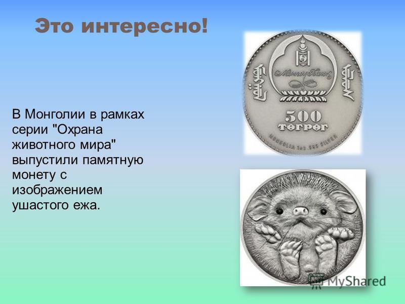 Это интересно! В Монголии в рамках серии Охрана животного мира выпустили памятную монету с изображением ушастого ежа.