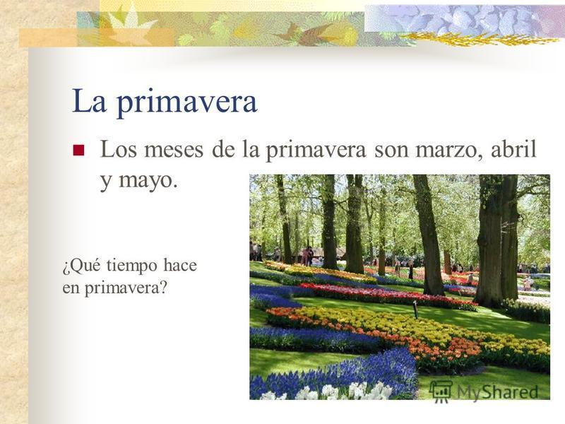 La primavera Los meses de la primavera son marzo, abril y mayo. ¿Qué tiempo hace en primavera?