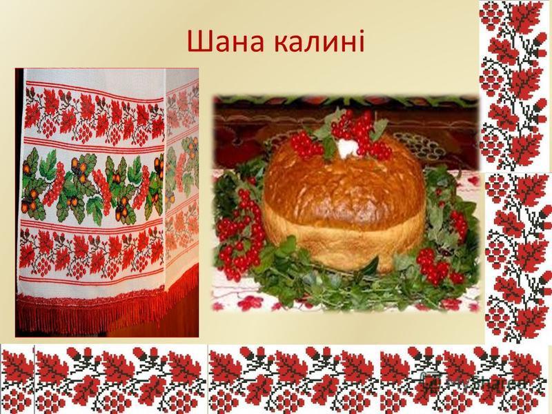 Калина-символ України