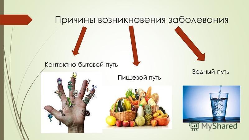 Причины возникновения заболевания Контактно-бытовой путь Пищевой путь Водный путь