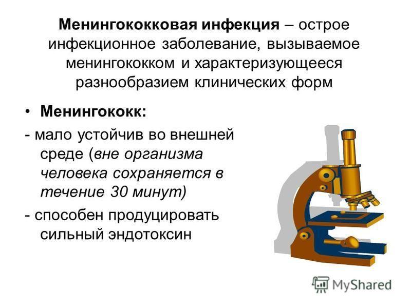 Менингококковая инфекция – острое инфекционное заболевание, вызываемое менингококком и характеризующееся разнообразием клинических форм Менингококк: - мало устойчив во внешней среде (вне организма человека сохраняется в течение 30 минут) - способен п