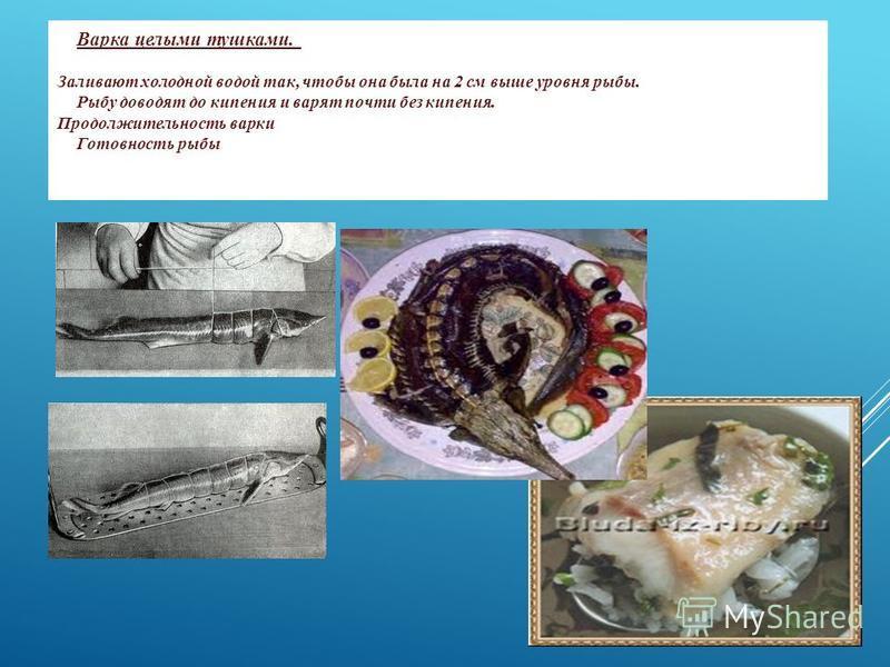 Варка целыми тушками. Варят судака, форель, лосося, белорыбицу, щуку, нельму, стерлядь. Обработанную рыбу, перевязанную шпагатом, укладывают на решетку рыбного котла брюшком вниз. Заливают холодной водой так, чтобы она была на 2 см выше уровня рыбы.