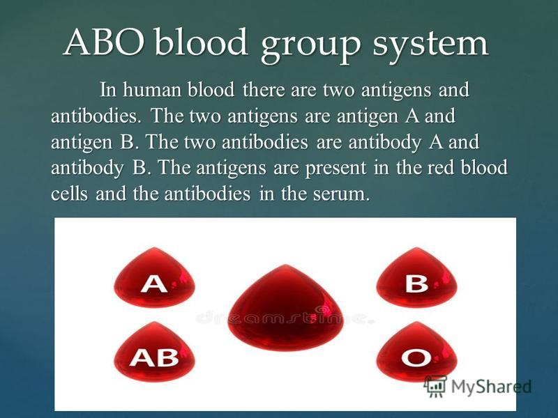 In human blood there are two antigens and antibodies. The two antigens are antigen A and antigen B. The two antibodies are antibody A and antibody B. The antigens are present in the red blood cells and the antibodies in the serum. In human blood ther