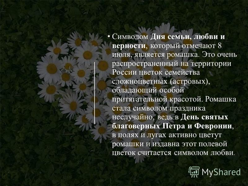 Символом Дня семьи, любви и верности, который отмечают 8 июля, является ромашка. Это очень распространенный на территории России цветок семейства сложноцветных (астровых), обладающий особой притягательной красотой. Ромашка стала символом праздника не