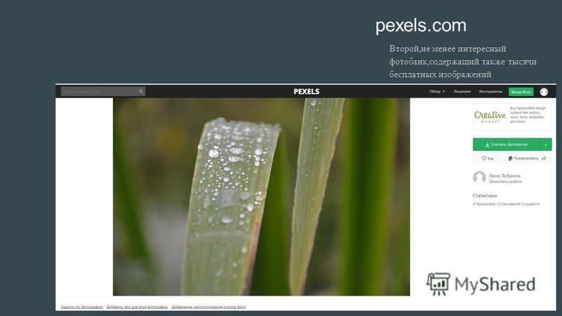 pexels.com Второй, не менее интересный фотобанк, содержащий также тысячи бесплатных изображений
