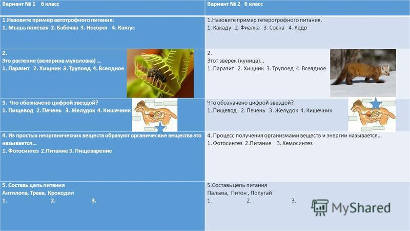 Вариант 1 6 класс Вариант 2 6 класс 1. Назовите пример автотрофного питания. 1. Мышь полевая 2. Бабочка 3. Носорог 4. Кактус 1. Назовите пример гетеротрофного питания. 1. Какаду 2. Фиалка 3. Сосна 4. Кедр 2. Это растение (венерина мухоловка) … 1. Пар
