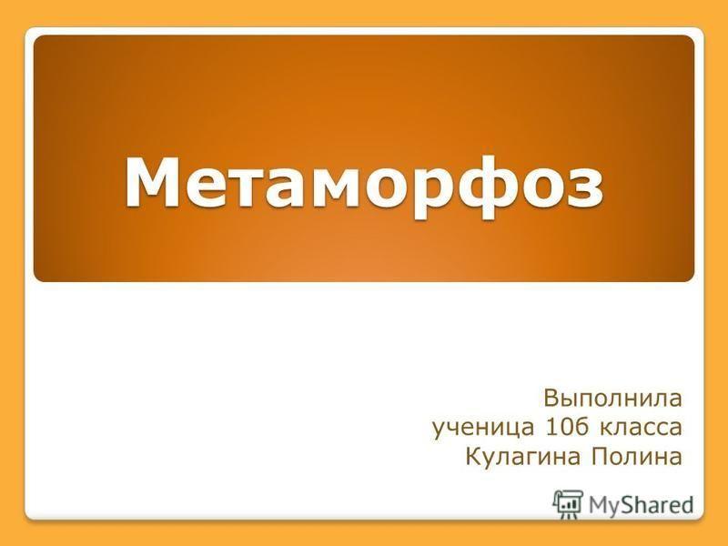 Метаморфоз Выполнила ученица 10 б класса Кулагина Полина