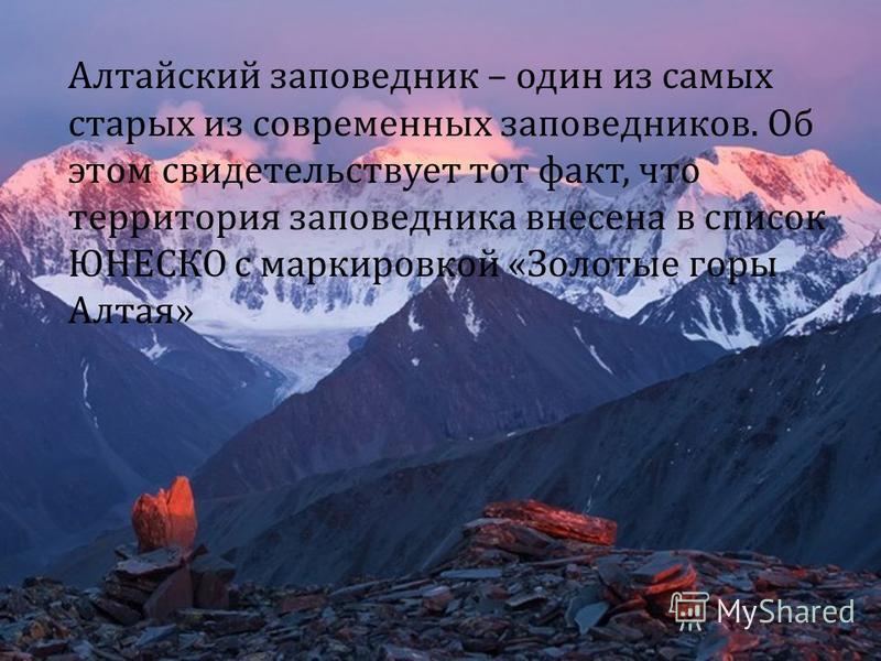 Алтайский заповедник – один из самых старых из современных заповедников. Об этом свидетельствует тот факт, что территория заповедника внесена в список ЮНЕСКО с маркировкой « Золотые горы Алтая »
