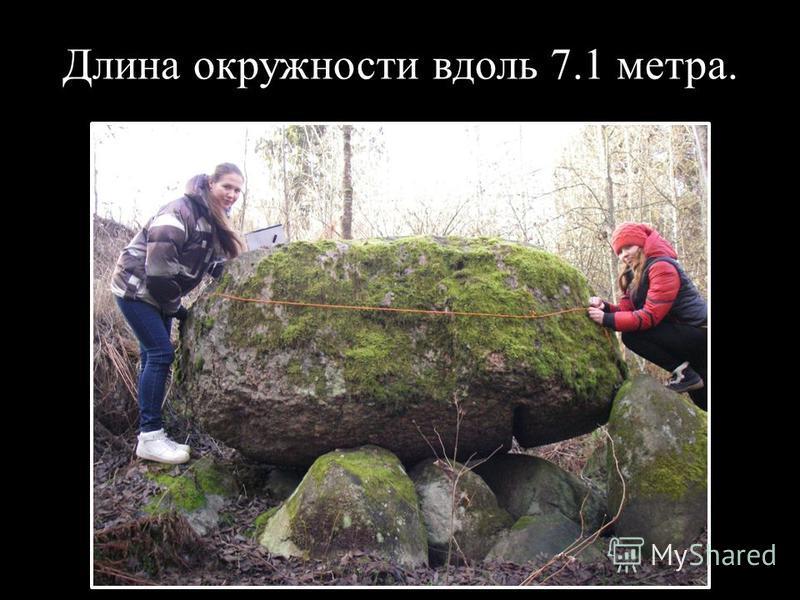 Длина окружности вдоль 7.1 метра.